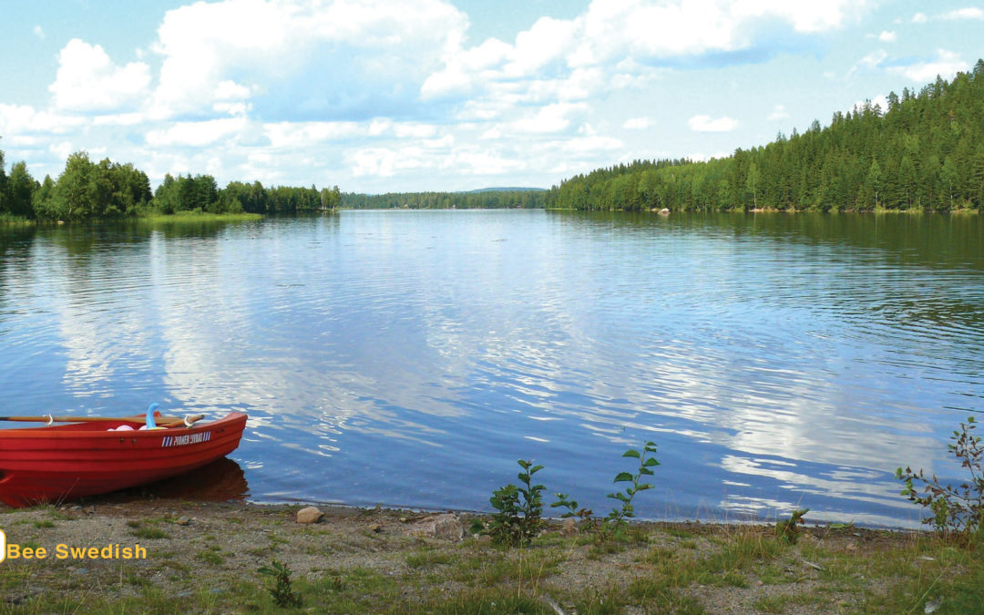 Summer Offer |Swedish Language Training